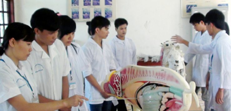 Cao đẳng Thú Y Hà Nội Thông báo Tuyển sinh năm 2016