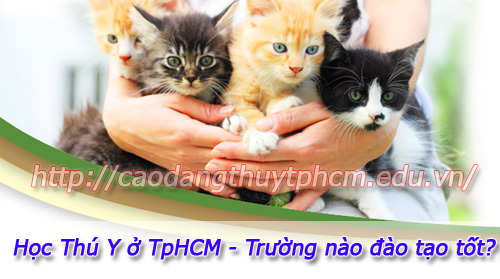 hoc-thu-y-o-tphcm
